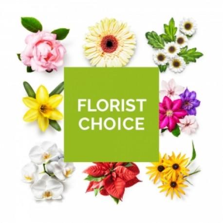 D2F Florist's Choice