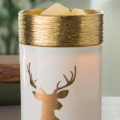 Christmas Melt Warmer Gift Pack